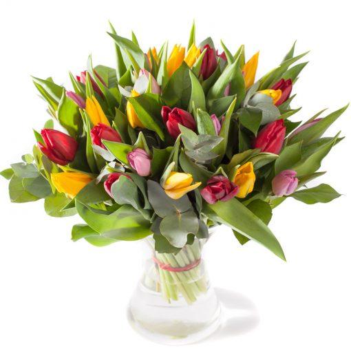 Tulpen gemengd