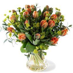 Vorstelijke Tulpen