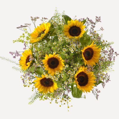 Zonnebloemen boven